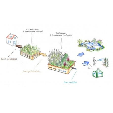 Phyto puration est une technique d 39 puration par filtres for Ventes de plantes par internet