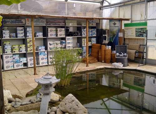 magasin vente de plantes aquatiques