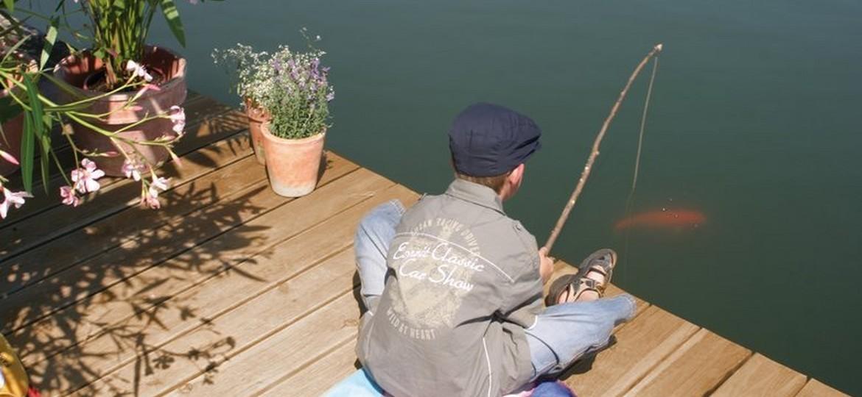 Vente plantes aquatique en ligne