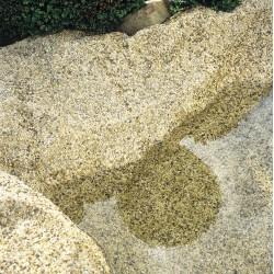 BACHE GRAVILLONNEE - SABLE - larg 0.40m